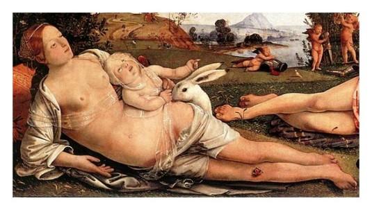 Cosimo_Venus - Copie