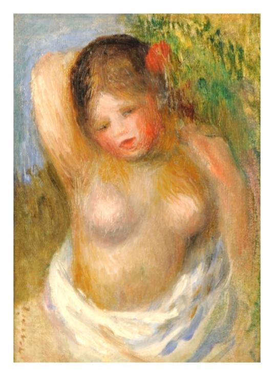 43 Renoir cheveux 3 (4)