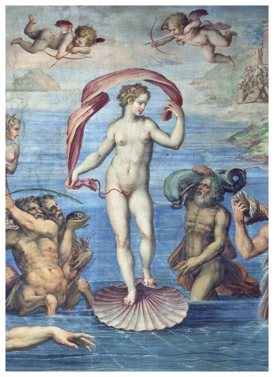 14 Giorgio_Vasari_-naissance de venus  (3)