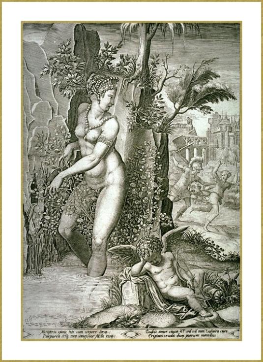 Vénus piquée par une rose
