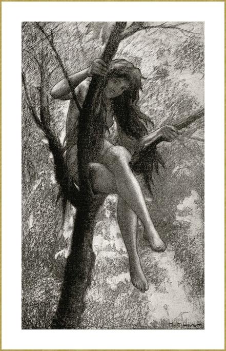 Dans un arbre *