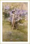 Cerisier en fleur *